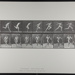 Running. [M. 68]; Da Capo Press; Muybridge, Eadweard; 1887; 1972:0288:0020