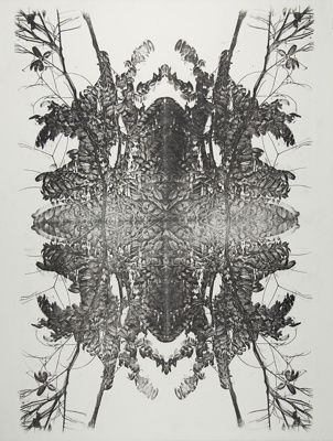 Untitled [Branches and leaves]; Lyons, Joan; ca. 1970s; 1986:0090:0010