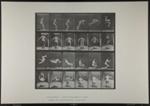 Running somersault. [M. 363]; Da Capo Press; Muybridge, Eadweard; 1887; 1972:0288:0096