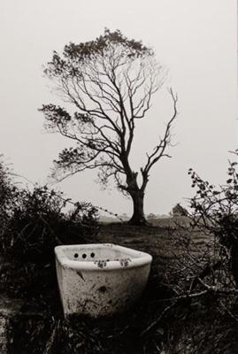 Bathtub; Frajndlich, Abe; 1971; 1976:0032:0012