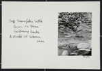 Untitled; Cox, Gary; ca. 1970; 1971:0078:0001