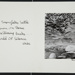 Untitled; Cox, Gary; ca. 1970; 1971:0078:0001