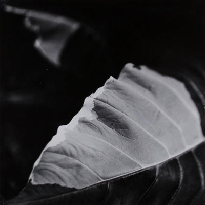 Untitled; Barrow, Thomas F.; Nov. 1963; 1971:0037:0001