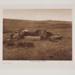 Atsina Burial; Curtis, Edward S.; 1908; 1983:0015:0001