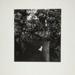 Untitled [carpet, pillow, dog figure]; Fichter, Robert; ca. 1960-1970; 2000:0061:0012
