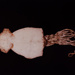 III. CUTTLEFISH (Rossia mastigophora); Frampton, Hollis; 1982; 1986:0018:0005