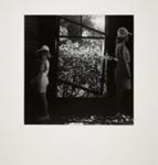 Bird in the Bush Infant Welfare Centre #1; Meatyard, Ralph Eugene; ca. 1960s; 1987:0096:0001