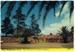 Postcard, Port Macquarie NSW Main Entrance the Historic Cemetery; Samuel Lee & Co.; c1972; 2013.83b