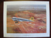 Painting print of Douglas C-47B flying over barren country-land in Northern Australia.; TAM2012.1234