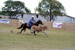 Alan Davison on Molly (horse) competing in the 2011 Hughenden Campdraft; Melissa Driscoll; 26 August 2011; 2012-338