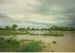 Flinders River flood, North Hughenden, 1980s/1990s?; Unidentified; 2011-319