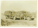 Three men & child with trucks, Hughenden, 1946; Unidentified; 2011-309