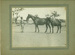 Unidentified man with mare and foal, 1910s - 1930s?; Unidentified; 1910s - 1930s?; 2012-232