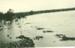 Flinders River in flood, Hughenden 1930s; Unidentified; 1930s; 2012-134