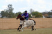 Wesley Schultz on Hawkeye (horse) competing in the 2011 Hughenden Campdraft; Melissa Driscoll; 26 August 2011; 2012-337