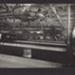 Photograph [36 of 47, McConnell Album] ; Hyne, Crown Studio (Gore); 1925; MT2012.72.36