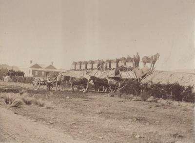 Photograph [C.P. Sleeman's coal/lignite pit loading bank at Mataura]; Blackley, Geo; 1880-1910; MT2011.185.73