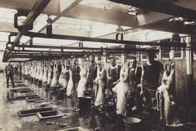 Undated black and white photograph of butchers at ...