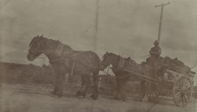 Photograph [C.E. Rowe and Son's coal dray, driven by Jack Brewster]; unknown photographer; 1920s; MT2011.185.68
