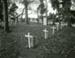 Pikiraki Urupā at Tuturau; Andrew Ross; 07.05.2014; MT2015.25.41