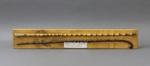 Walking Cane; unknown maker; 1890; MT1993.96.1
