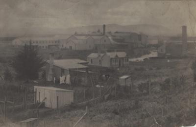 Postcard [Wooden Cottages, Mataura]; Sleeman, C.P. (Mr); 1890-1920; MT2011.185.117