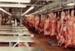 Photograph [Mutton Boning Chain, Mataura Freezing Works]; Green,Trevor; 24.11.1982; MT2013.3.68