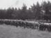 Photograph [Waiarikiki farm clearing sale, 1914]; unknown photographer; 1914; MT2011.185.369