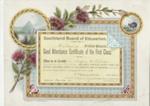 Certificate, Southland Board of Education, Good Attendance Certificate, Logan McKelvie ; Craig, W. & Co; 18.12.1903; MT2012.96.1