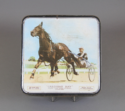 Cake tin; this tin celebrates the champion standar...