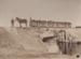 Photograph [Horse-Drawn Coal Wagons]; Blackley, George; 1897-1910; MT2011.185.74