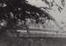 Photograph [Mataura Arch Bridge]; Kerr, Daphne (nee Perry); 1939; MT2012.57.13
