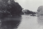 Photograph [Pensioner's Pool, Mataura River]; Hannabus, John; 1955-1959; MT2012.70.2