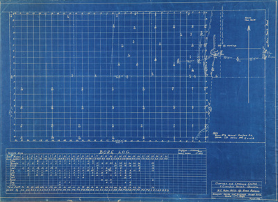 Survey blueprint; Bore Log chart and survey plan o...