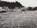 Photograph [1978 Flood, Pulp Yard, Mataura Paper Mill]; Henderson, Keith Raymond; 1973; MT2017.18.30
