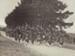Photograph [Mataura Kilties Pipe Band at John Taylor's Funeral]; unknown photographer; 04.08.1935; MT2014.36.18