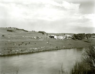 Mataura Farmlet; Andrew Ross; 05.05.2014; MT2015.25.27