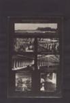 Photograph [40 of 47, McConnell Album] ; Hyne, Crown Studio (Gore); 1925; MT2012.72.40