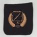 Pocket, Blazer, Mataura Amateur Swimming Club; unknown maker; 1960-1969; MT2012.116.1