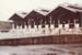Photograph [Sheep Yards, Mataura Freezing Works]; Green,Trevor; 1981; MT2013.3.1