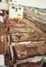 Photograph [Building Expansion, Mataura Freezing Works]; Green,Trevor; 29.06.1984; MT2013.4.11