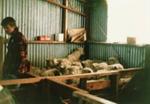 Photograph [Strike Relief, Mataura Freezing Works]; Green,Trevor; 30.04.1990; MT2013.6.33