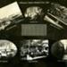 Photograph [25 of 42, McConnell Album] ; Hyne, W. Crown Studio (Gore); 1925; MT2015.15.25