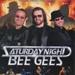 SATURDAY NIGHT BEEGEES - LEAFLET; JAN 2014; 201401NE