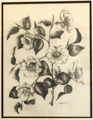 Camellias; Margaret Bell (1930-2010), New Zealand; Unknown