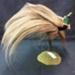 Raggiana Bird of Paradise; 1/NZ/966