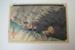 Driving Rain ; Utagawa Hiroshige (Japanese printmaker active 1797-1858); 1833-34; EC110.1JP