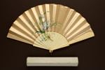 Folding Fan & Box; c. 1870-80; LDFAN2005.28