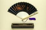 Folding Fan & Box; c. 1880; LDFAN2003.142.A.Y & LDFAN2003.142.B.Y