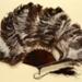 Feather Fan; c. 1900; LDFAN2012.43